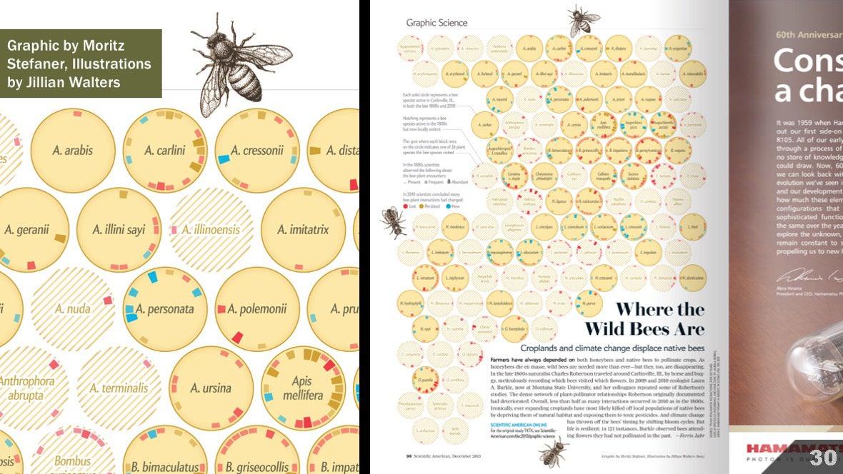 Визуализация науки: иллюстрации и инфографика - 32