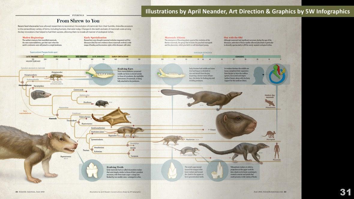 Визуализация науки: иллюстрации и инфографика - 33
