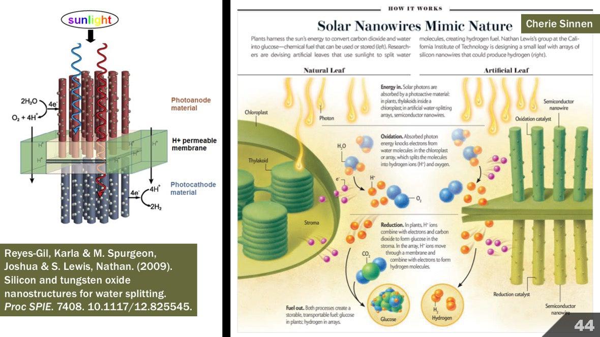 Визуализация науки: иллюстрации и инфографика - 48