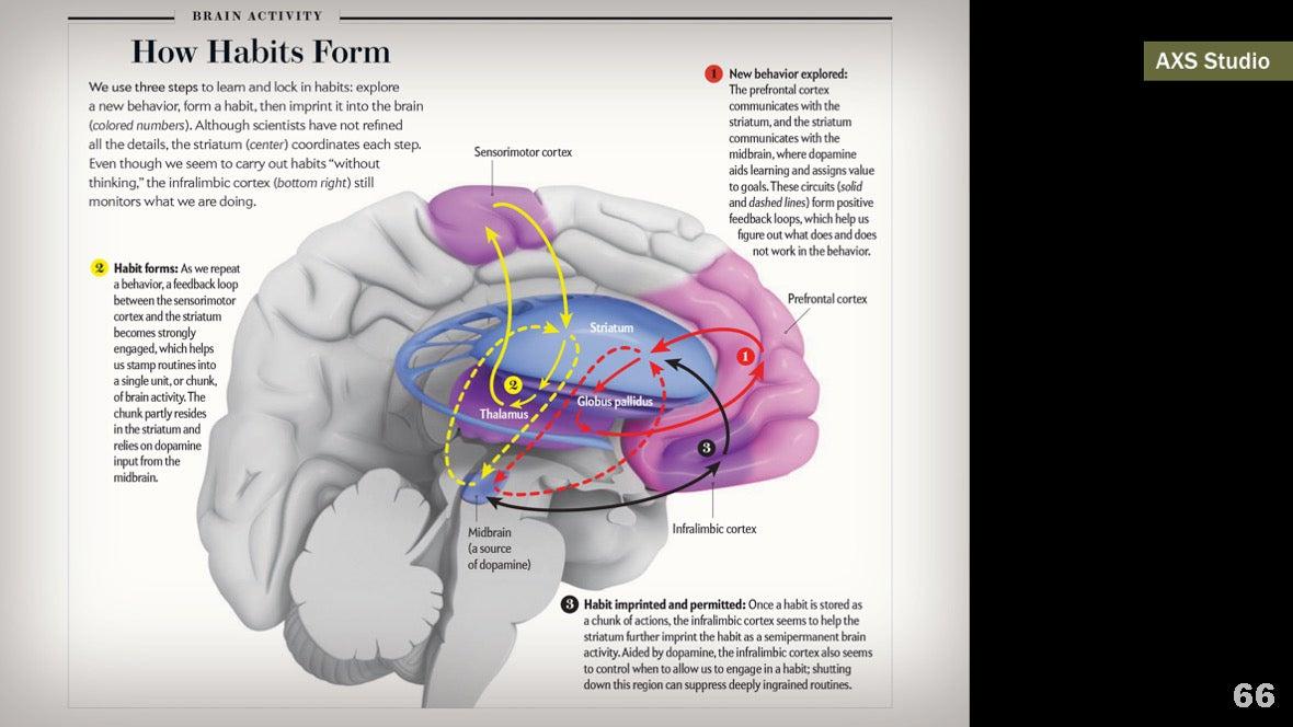 Визуализация науки: иллюстрации и инфографика - 78