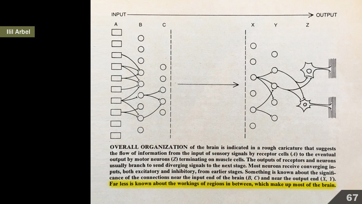 Визуализация науки: иллюстрации и инфографика - 79