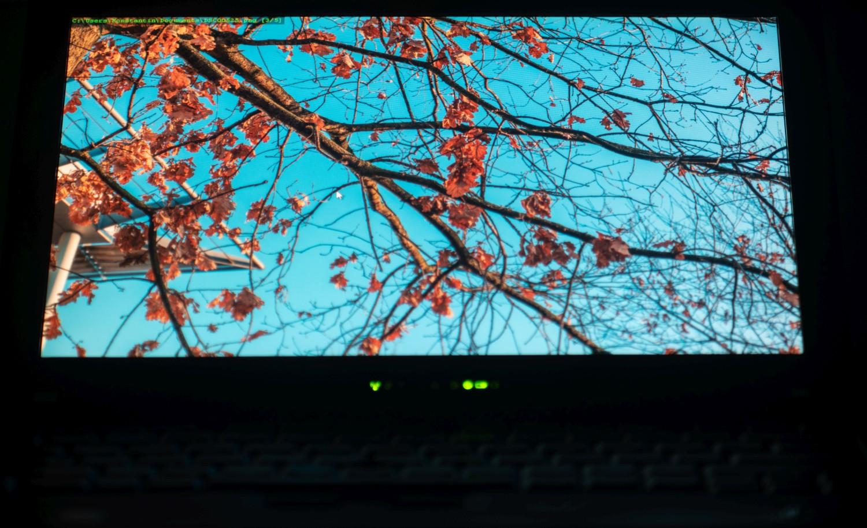 Древности: ThinkPad X200 и закрытые исходники - 28