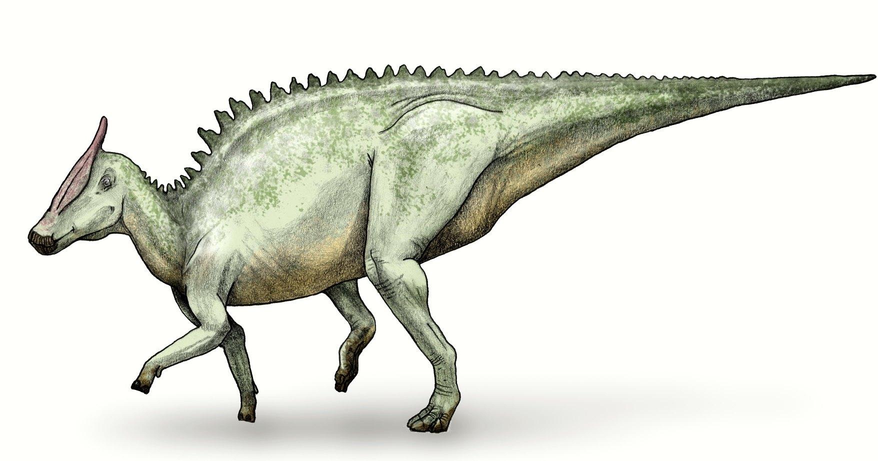 Редкий вид человеческого рака нашли на хвосте динозавра