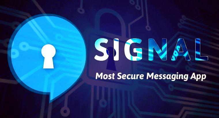 Мессенджер «Signal» обретает популярность - 1