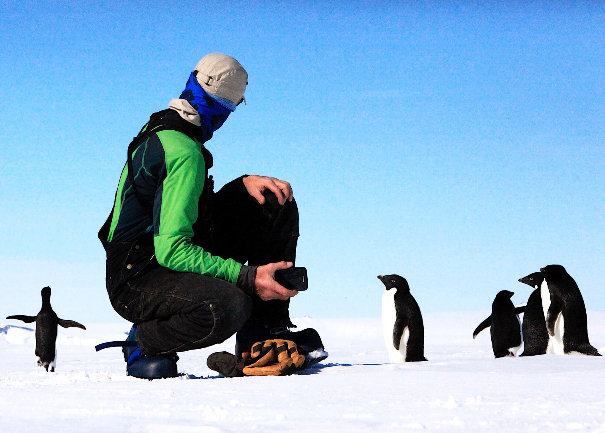 Как биоакустика помогает исследовать животный мир - 3