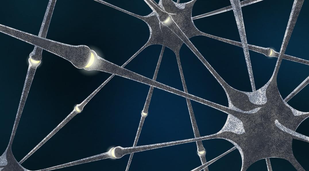Живые и искусственные нейроны связали через интернет - 1