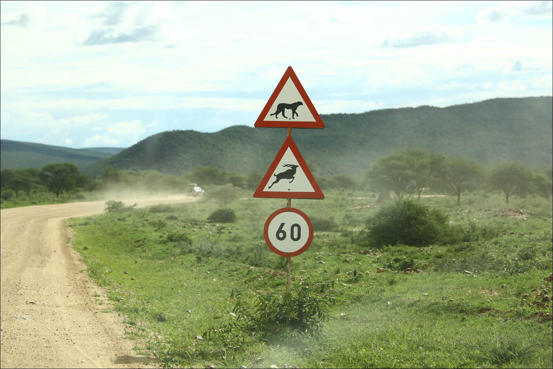 Намибия: инфраструктура и что лучше знать до поездки - 15