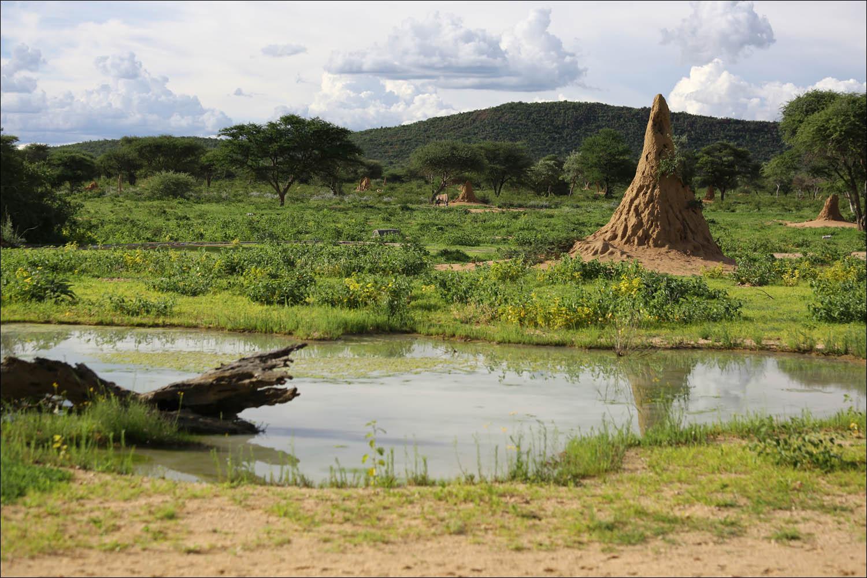 Намибия: инфраструктура и что лучше знать до поездки - 32
