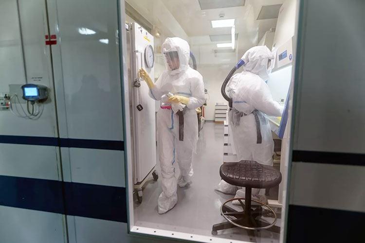 Создание вакцины против коронавируса займёт не меньше года, надежда на эффективные лекарства выше