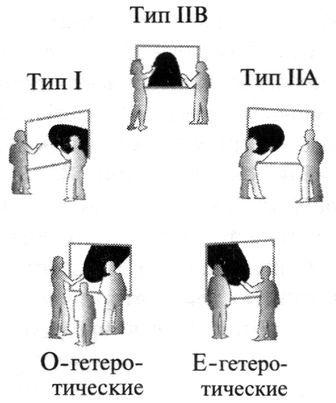 Эволюция теории струн до М-теории - 4