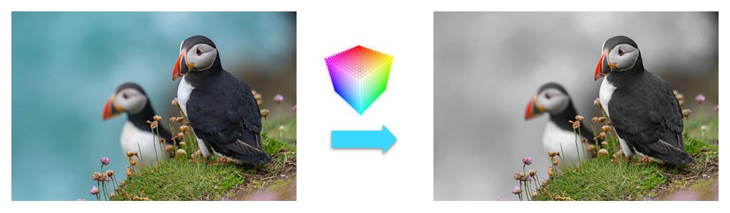 Трансформация цвета: поиски в прореженном столе - 1