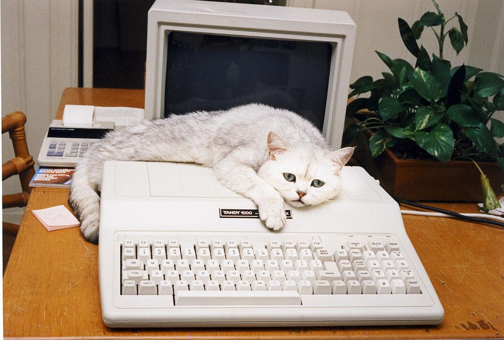 Компьютерные бренды 90-х - 87