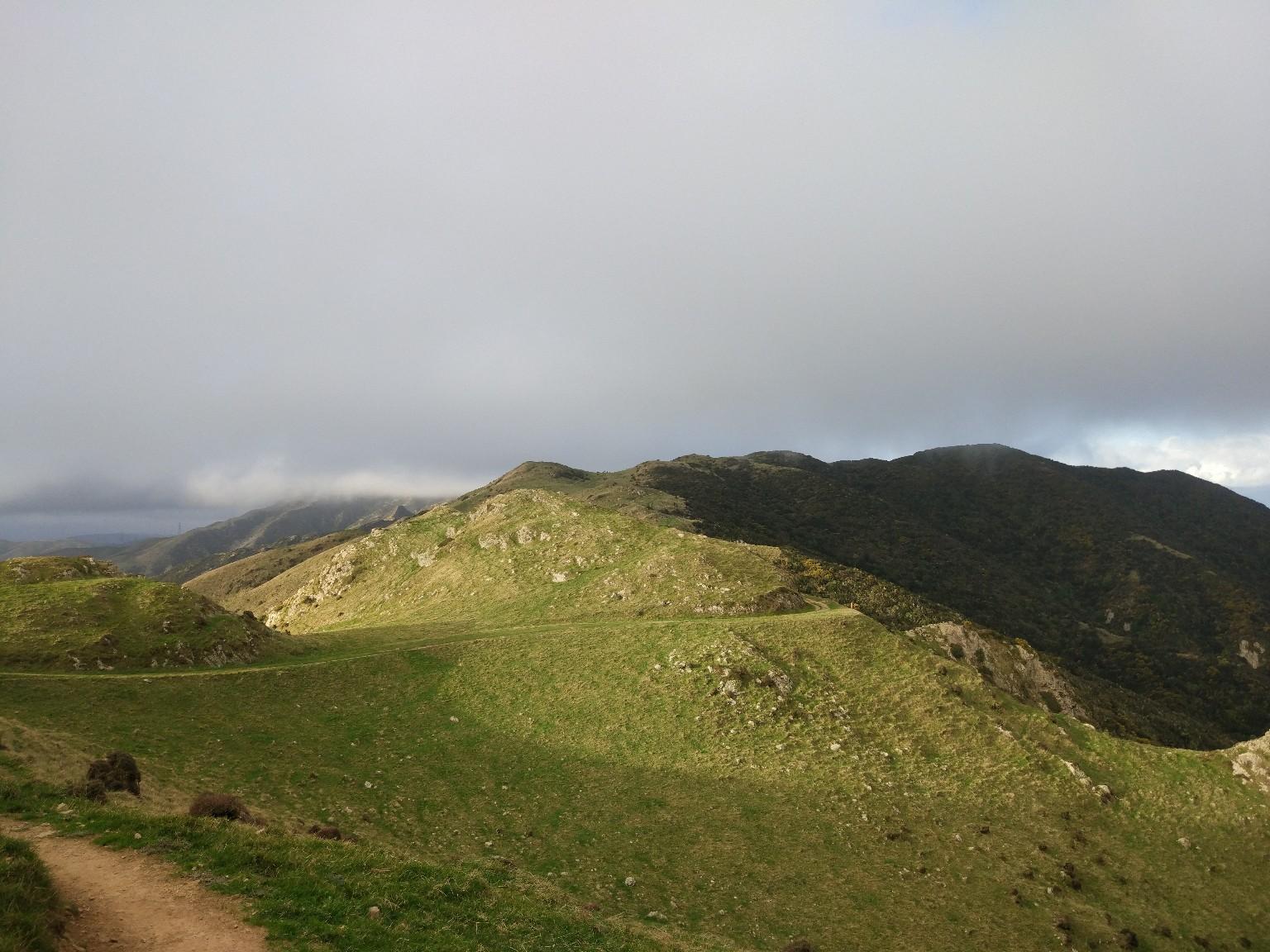 Вид с горы Kaukau на Makara