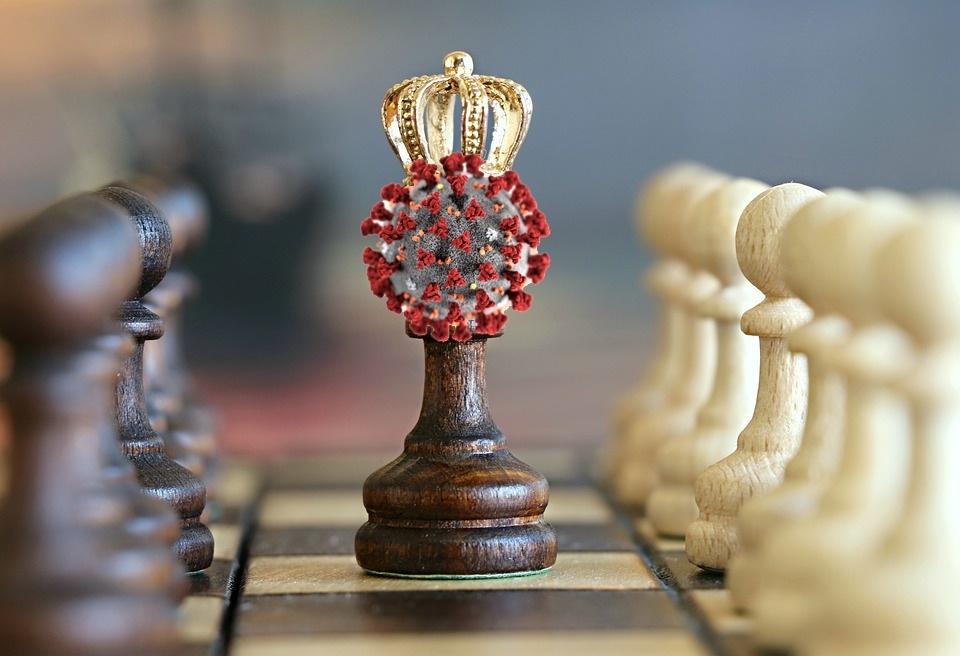 Что общего у коронавируса и шахмат? - 1