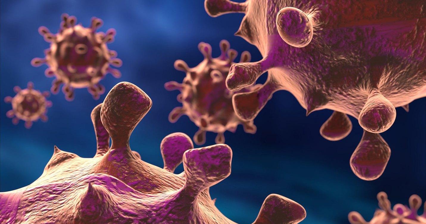 Люди и бактерии строят колонии по одним законам: неожиданное открытие
