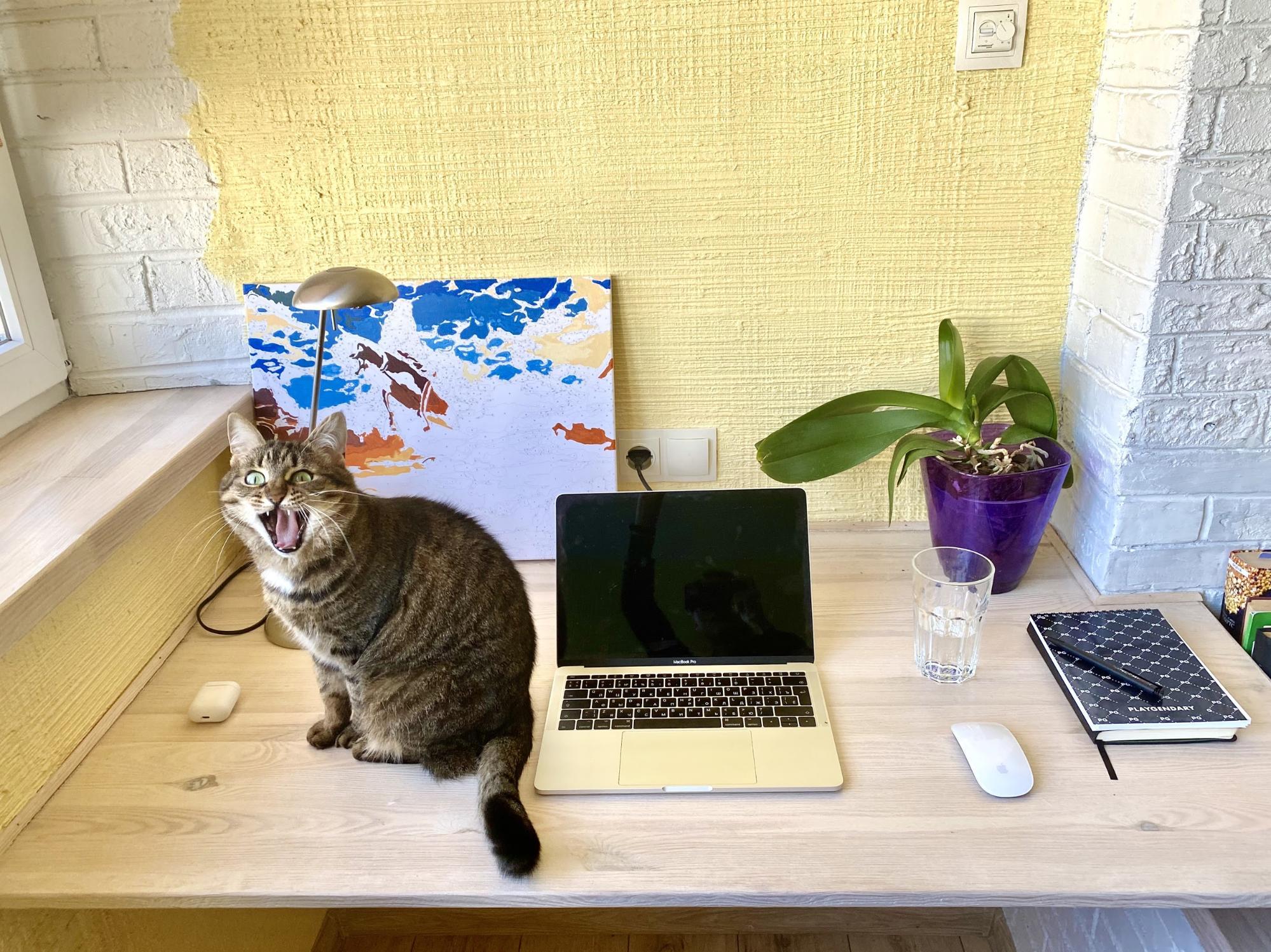 В офисе никого: разработка игр на удаленке - 7