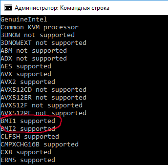 .NET Core: интринсики x86_64 на виртуальных машинах - 2