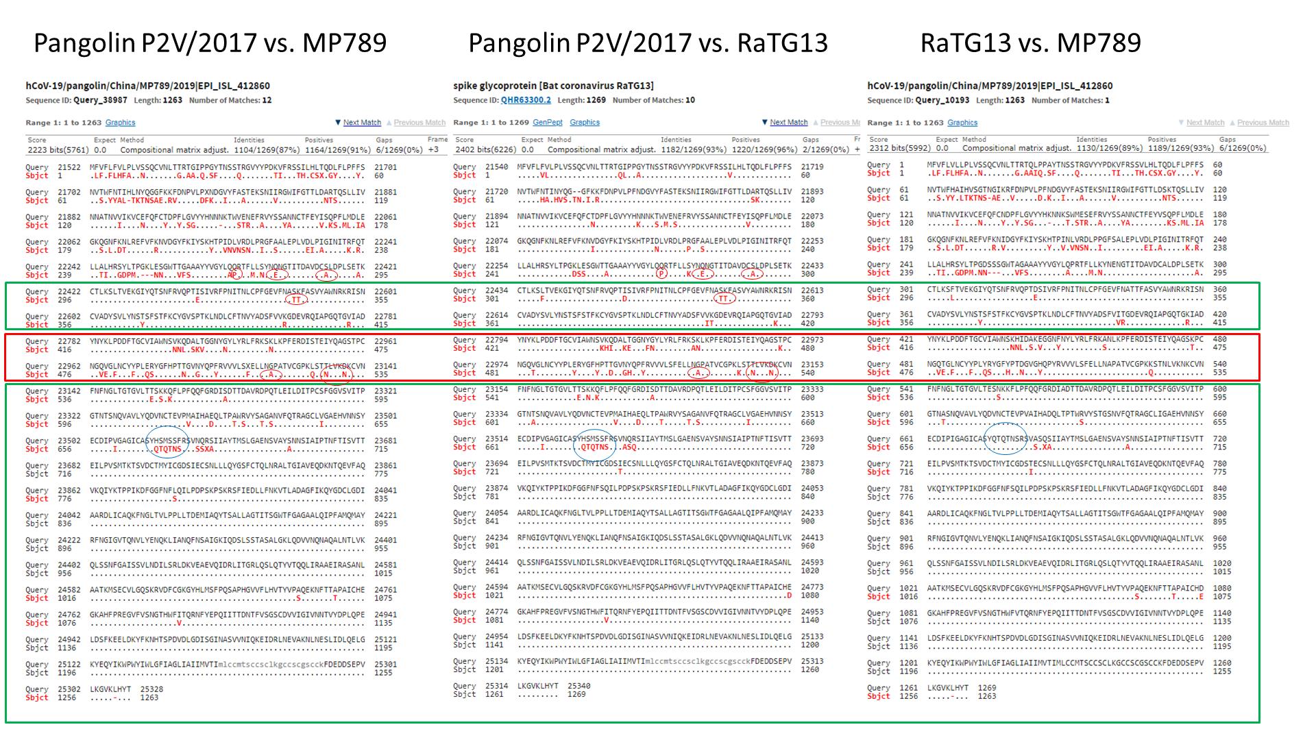 SARS нерукотворный? Генеалогия уханьского коронавируса - 12