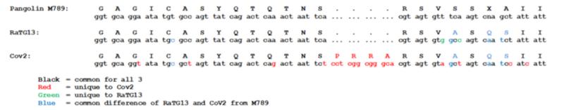 SARS нерукотворный? Генеалогия уханьского коронавируса - 13