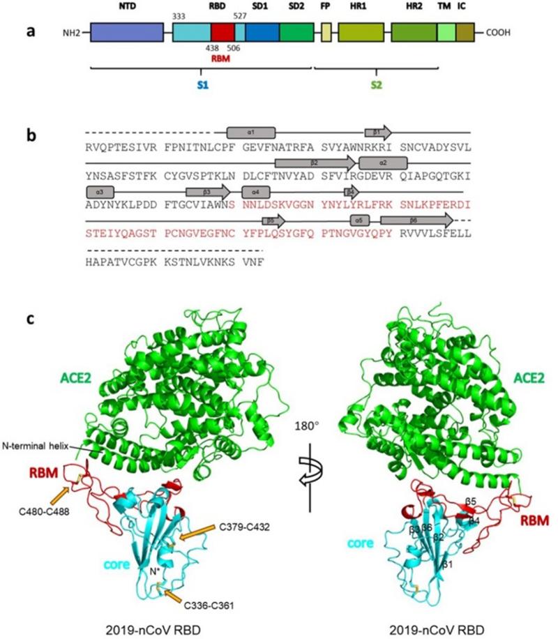 SARS нерукотворный? Генеалогия уханьского коронавируса - 6