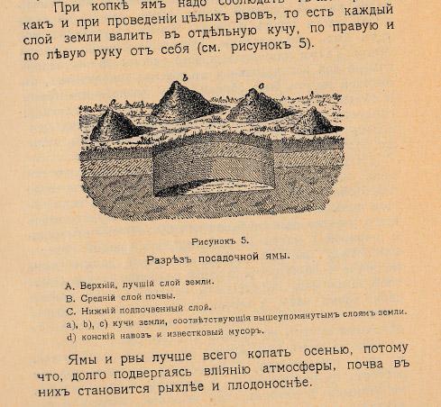 Как воспитать здорового довольного червя: разбираем инструкцию 1910 года - 10