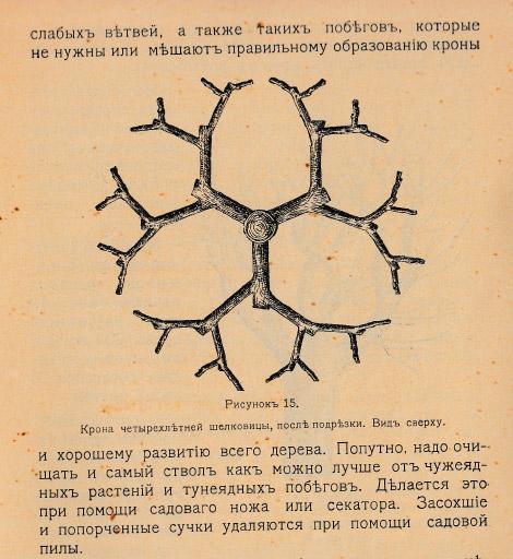 Как воспитать здорового довольного червя: разбираем инструкцию 1910 года - 11