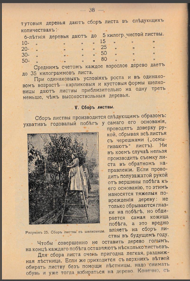 Как воспитать здорового довольного червя: разбираем инструкцию 1910 года - 12
