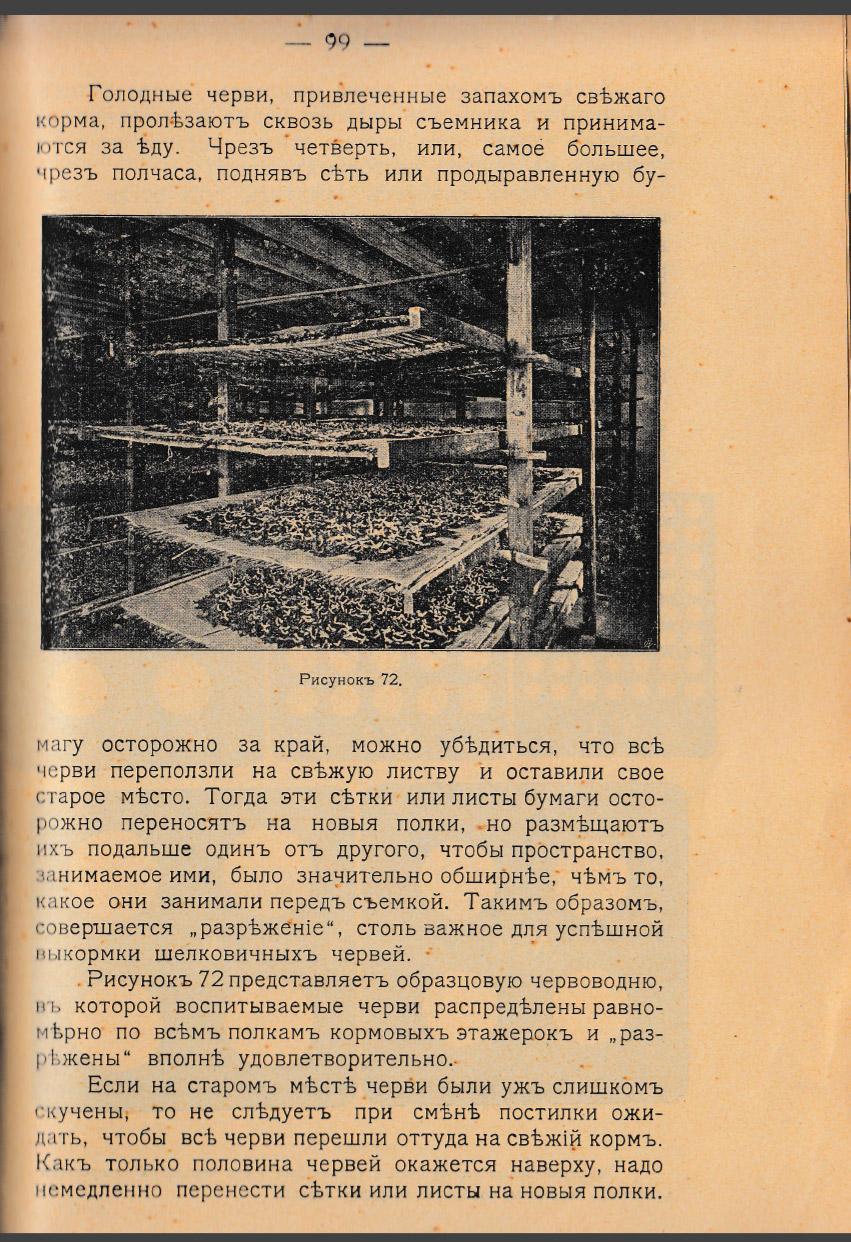 Как воспитать здорового довольного червя: разбираем инструкцию 1910 года - 21