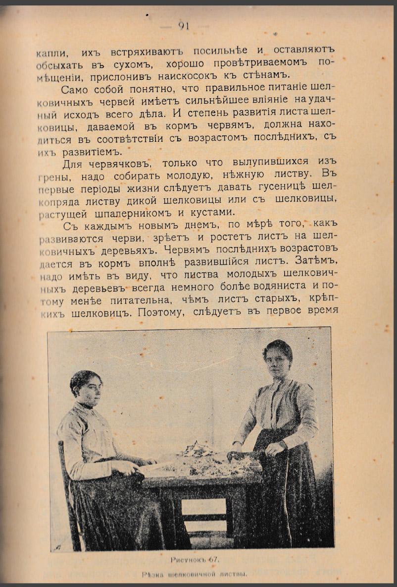 Как воспитать здорового довольного червя: разбираем инструкцию 1910 года - 22