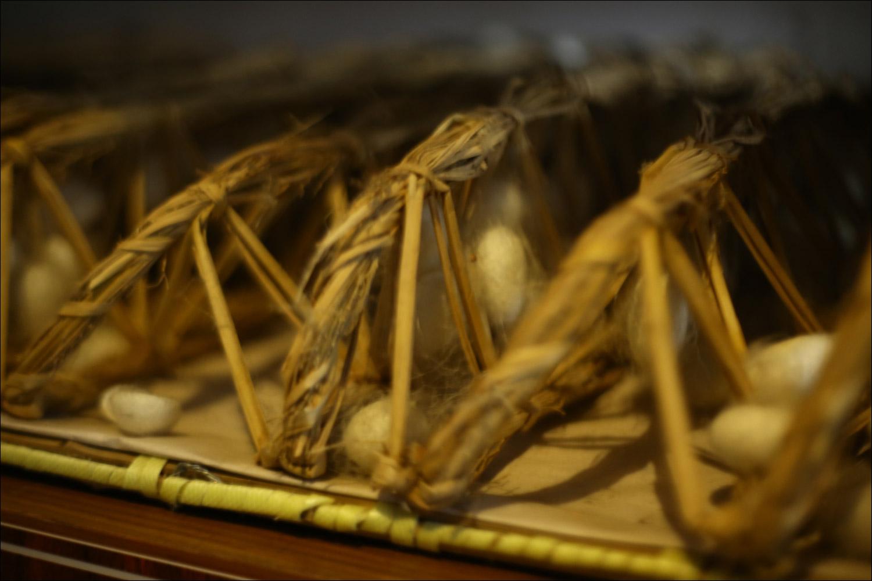 Как воспитать здорового довольного червя: разбираем инструкцию 1910 года - 26
