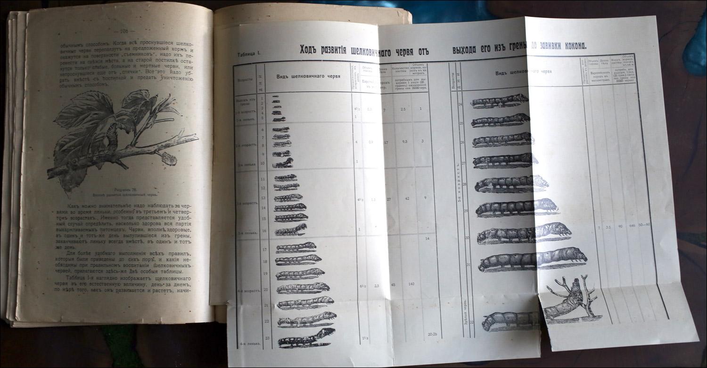 Как воспитать здорового довольного червя: разбираем инструкцию 1910 года - 3
