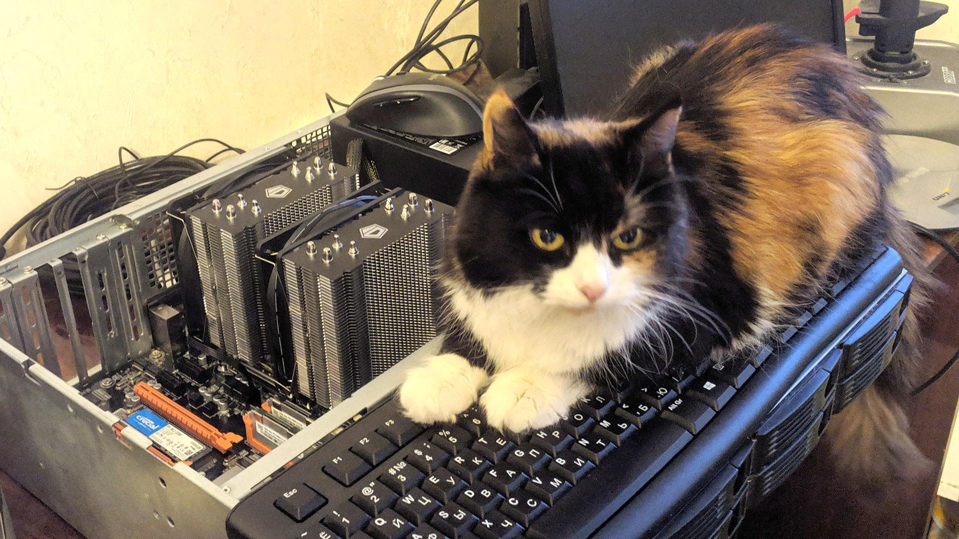 Дешёвый сервер из китайских запчастей. Часть 1, железная - 1