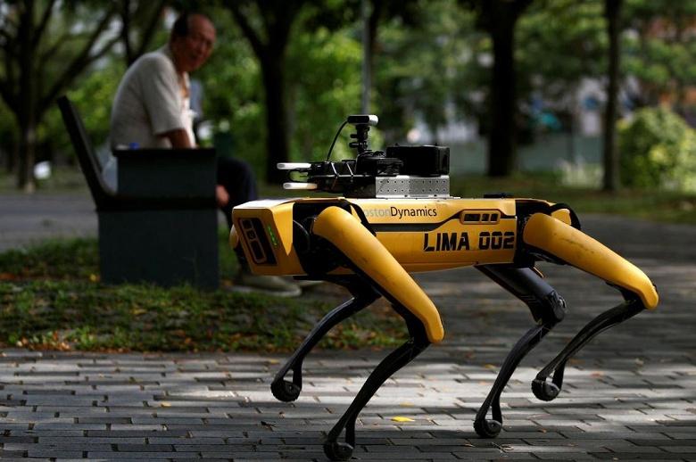Робот-собака напоминает посетителям сингапурского парка о необходимости держать дистанцию