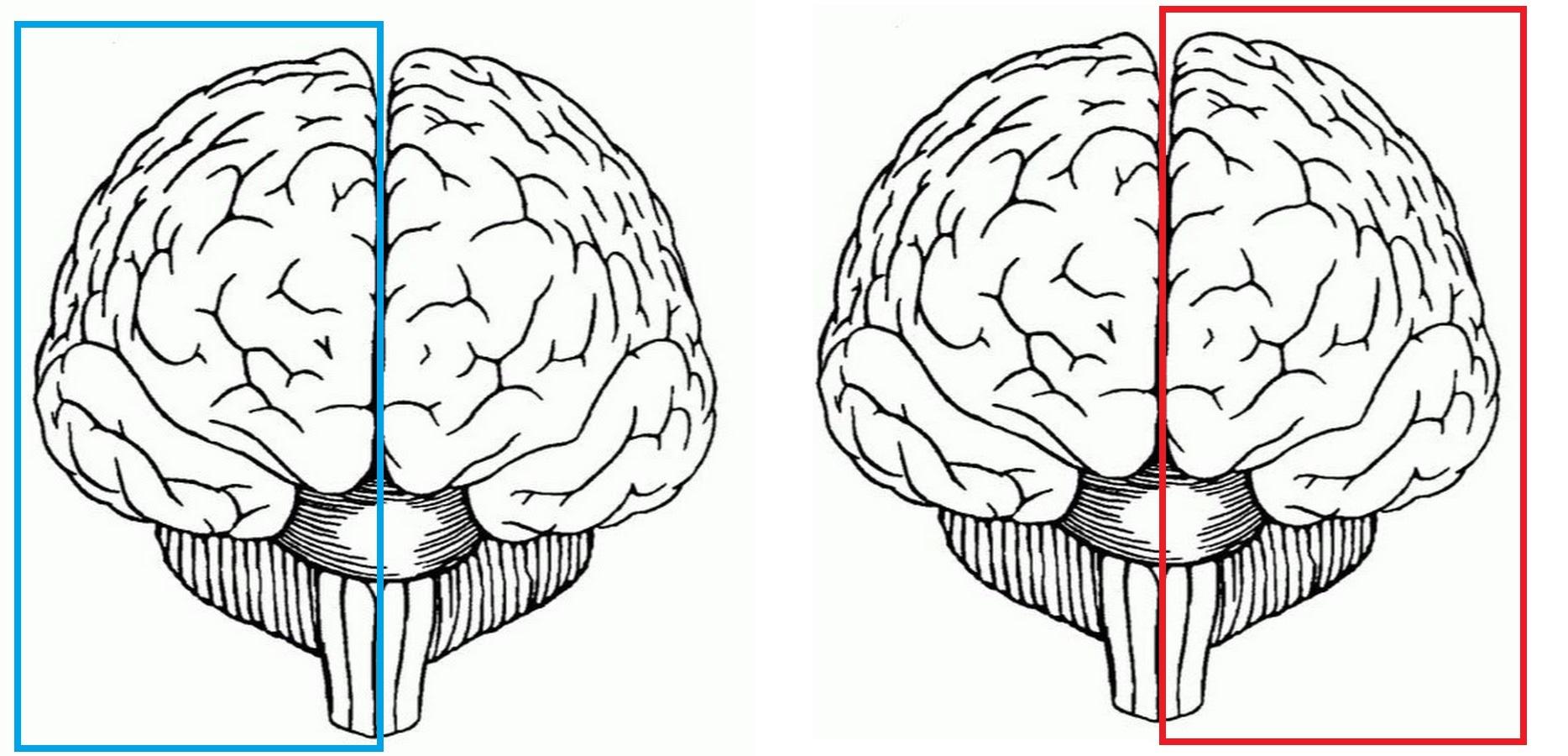 Инструкция по переносу своего сознания на цифровой носитель - 2