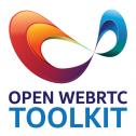 Компьютерное зрение на WebRTC-сервере с аппаратным ускорением от Intel OWT - 2