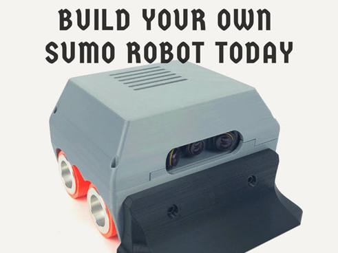 Робо-сумо: интеллектуальные бои роботов - 3