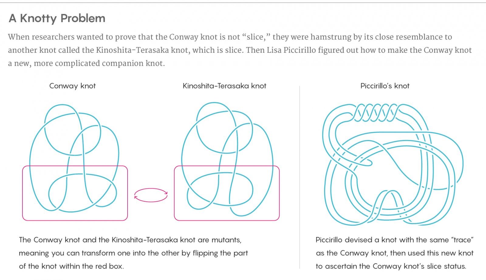 Аспирантка решила топологическую задачу полувековой давности - 3