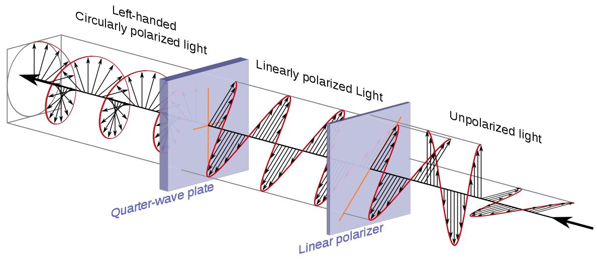 Хиральность, космические лучи и эволюция - 5