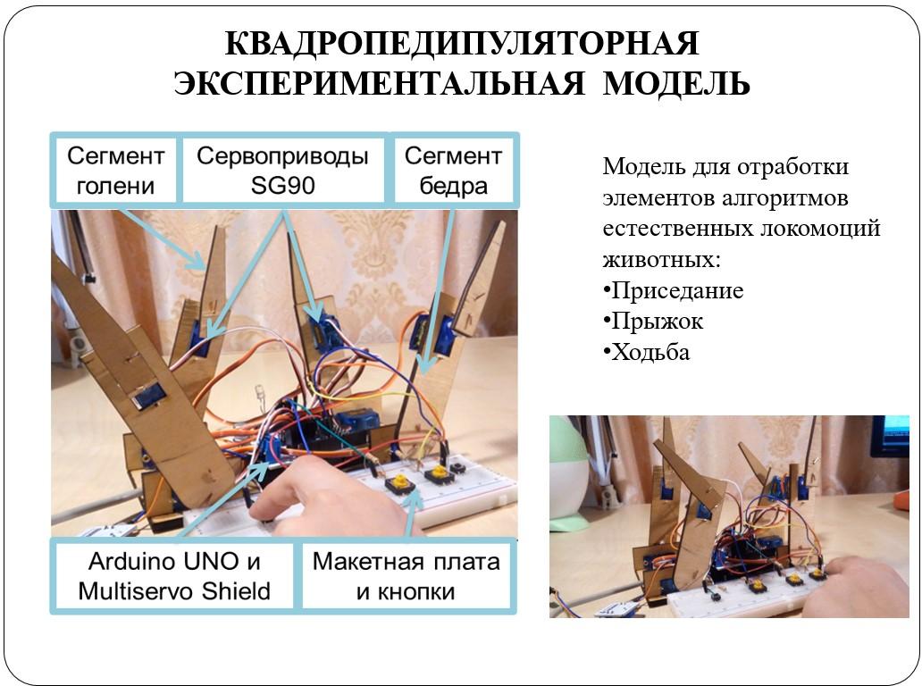 Отцы, дети и биоморфные роботы: интервью с Александрой Архиповой, героиней «Профессий будущего» - 7