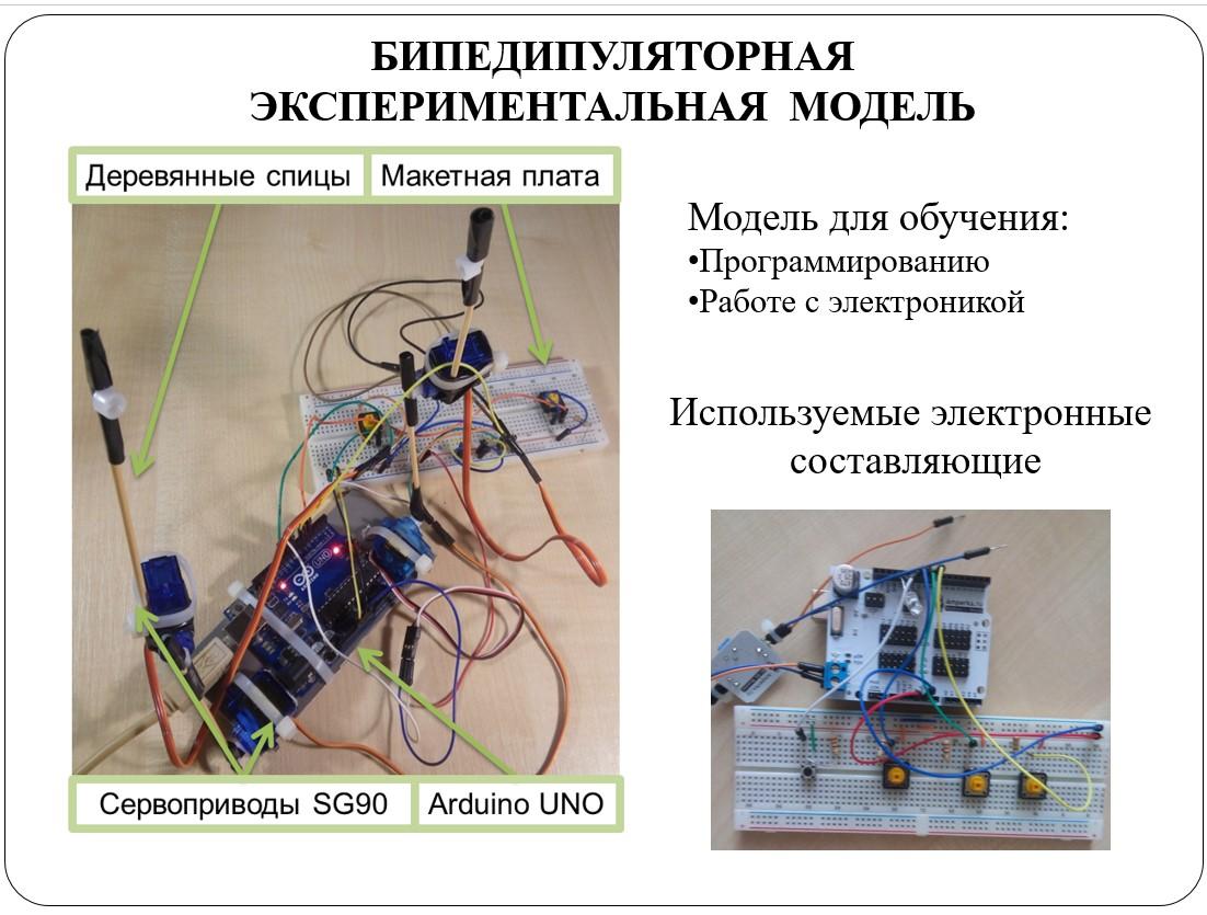Отцы, дети и биоморфные роботы: интервью с Александрой Архиповой, героиней «Профессий будущего» - 8