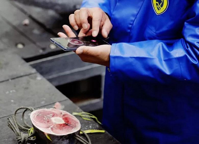 Вы можете попробовать суши, рыбу для которого выбрал искусственный интеллект. В Японии запустили приложение Tuna Scope