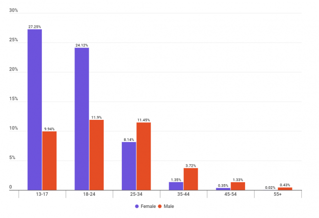 У TikTok в России почти половина аудитории — взрослые люди, а у популярных тиктокеров — молодые девушки - 3