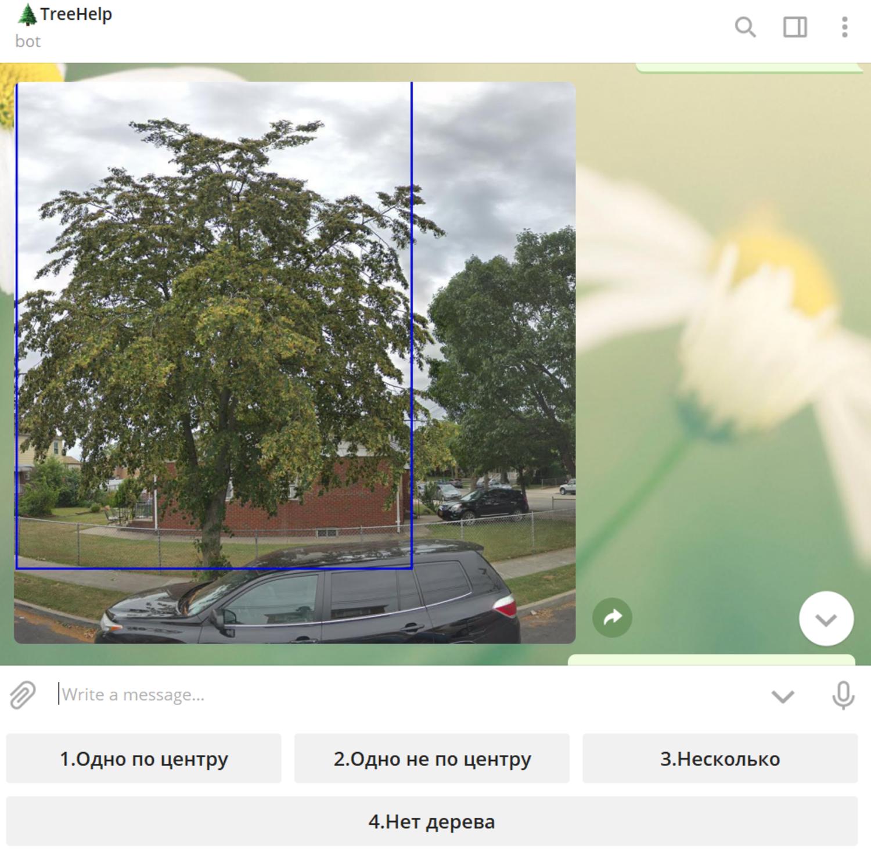 Как машинное обучение спасает деревья в Екатеринбурге - 6