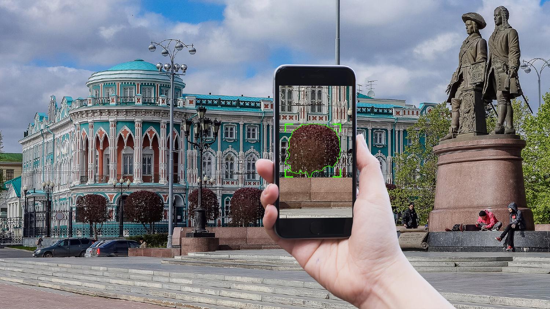Как машинное обучение спасает деревья в Екатеринбурге - 1
