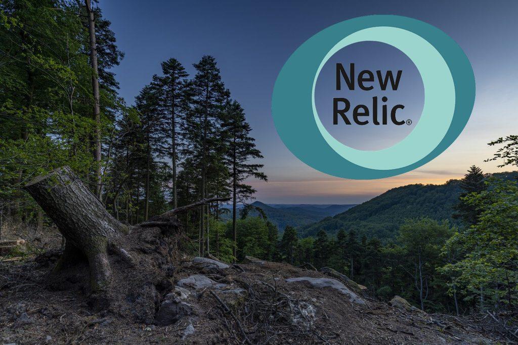 New Relic меняет бизнес-модель — открывает код агентов и инструментария - 1