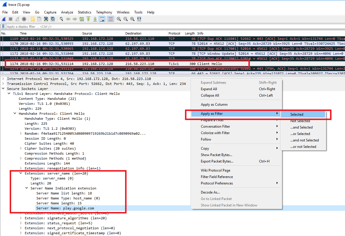 Wireshark, анализ TLS Clientf Hello сегмента