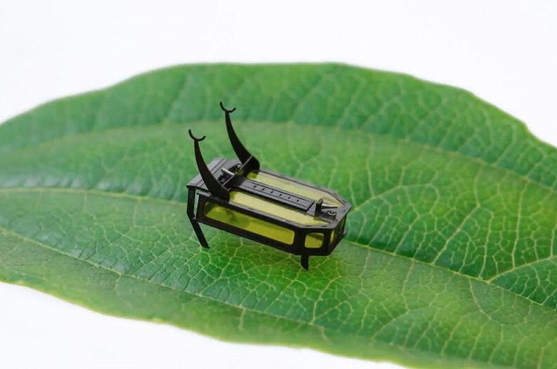 В США создан робот-жук, работающий на метаноле