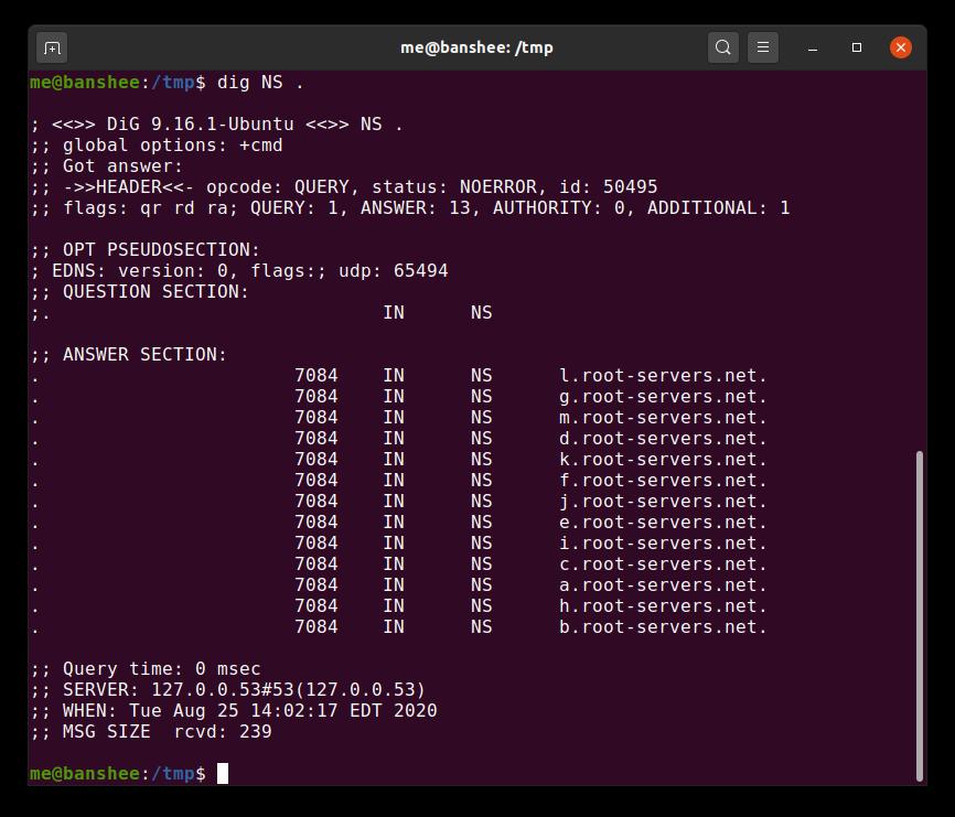 Одна из функций Chromium создаёт огромную нагрузку на корневые DNS-серверы - 2