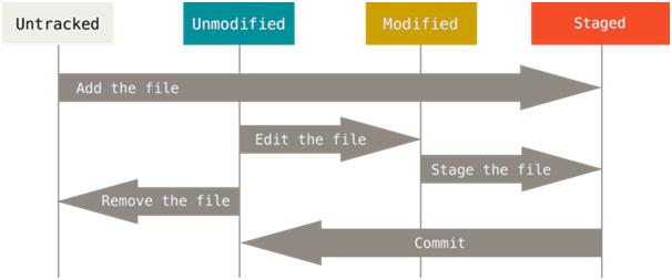 Путешествие в мир Linux и Git - 12
