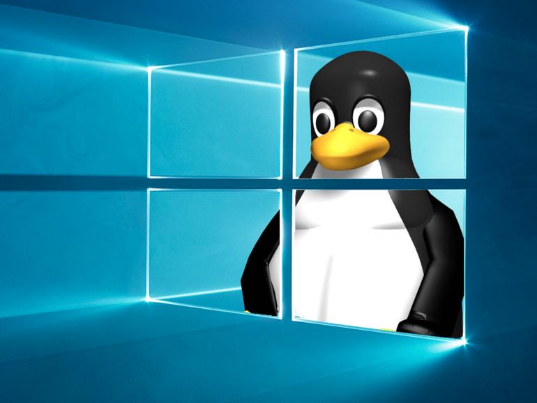 Евангелист Open Source Эрик Реймонд: Windows перейдет на ядро Linux в недалеком будущем - 1